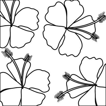 tropical flower decorative frame vector illustration design Stok Fotoğraf - 81134486