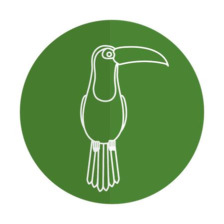 toucan tropical bird icon vector illustration design