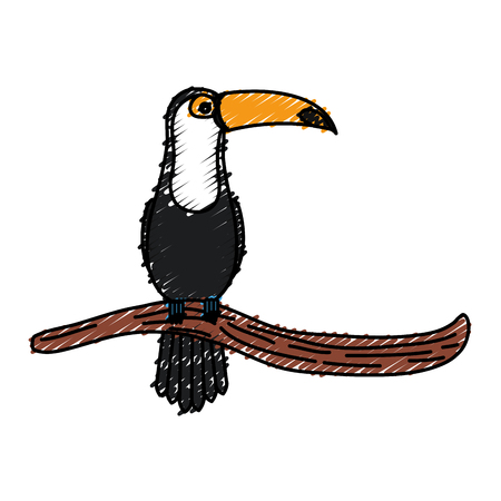 toucan in branch tropical bird icon vector illustration design Stock Photo