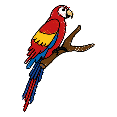 exotic parrot in branch tropical bird vector illustration design Banco de Imagens