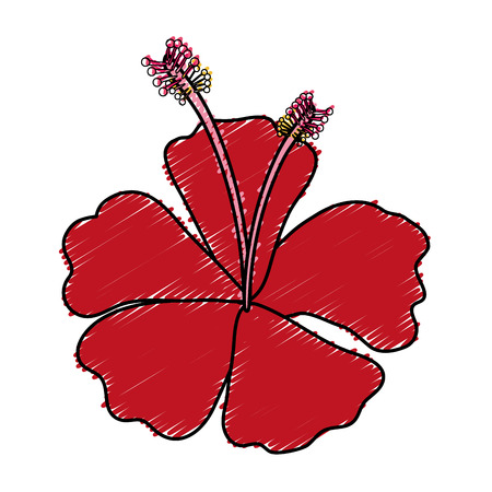tropical flower decorative icon vector illustration design Illustration