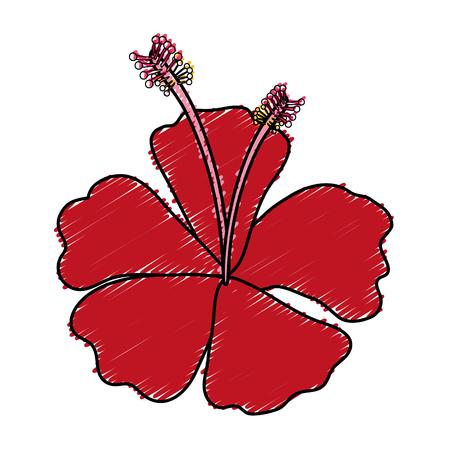 tropical flower decorative icon vector illustration design Stok Fotoğraf