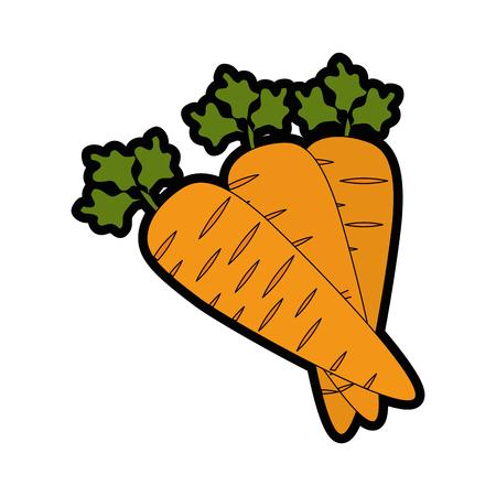 carrots vegetable icon over white background colorful design vector illustration Illustration