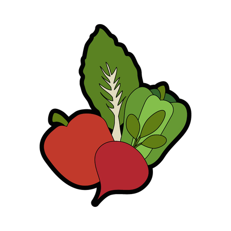 beetroot vegetable icon over white background vector illustration