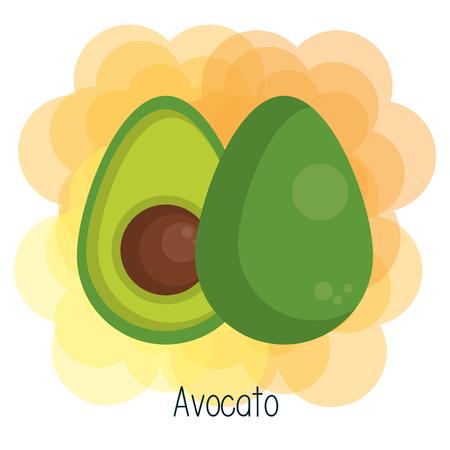 Avocado over white and orange background vector illustration