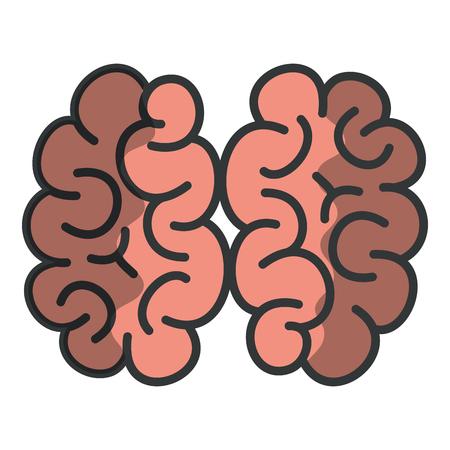 human brain isolated icon vector illustration design Stock Photo