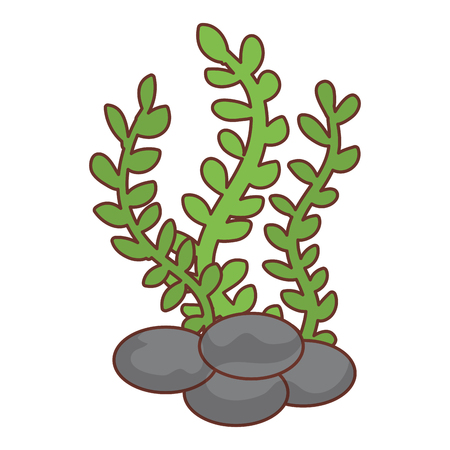 sea weed isolated icon vector illustration design Reklamní fotografie - 81271591
