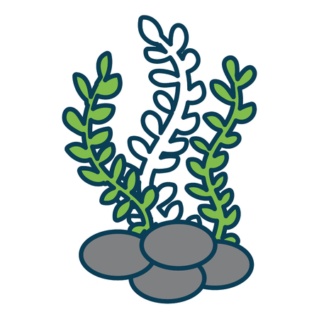 sea weed isolated icon vector illustration design