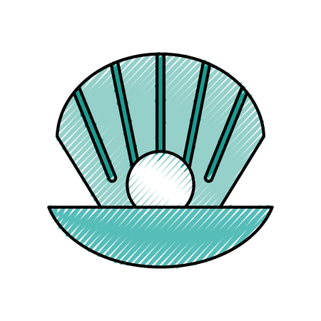 Sea shell isolated icon vector illustration design Reklamní fotografie - 81364617