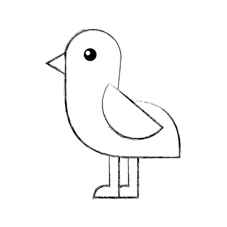 cute bird sea icon vector illustration design Stock Vector - 81373858