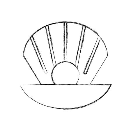 Concha de mar icono aislado diseño de ilustración vectorial Ilustración de vector