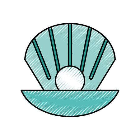 Concha de mar icono aislado diseño de ilustración vectorial