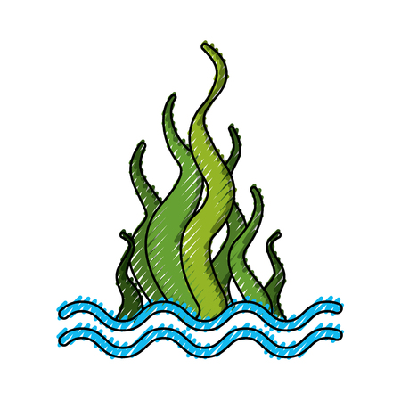 marine seaweed sealife icon vector illustration design