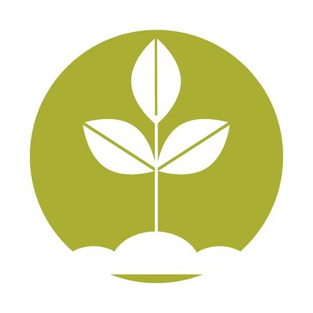 Gekweekte plant geïsoleerd pictogram vector illustratie ontwerp Stock Illustratie