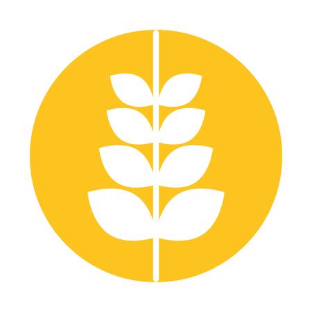 produits céréaliers: spike blé isolé icône vector illustration design