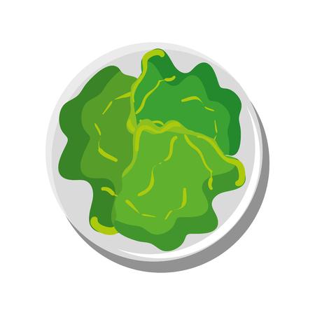 양상추 야채 절연 아이콘 벡터 일러스트 그래픽 디자인