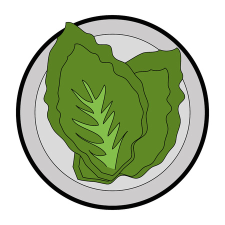 Salad vegetable food icon vector illustration graphic design