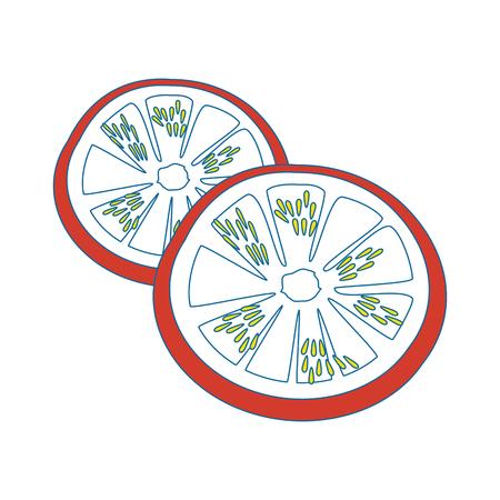 Tomato slice cartoon icon vector illustration graphic design