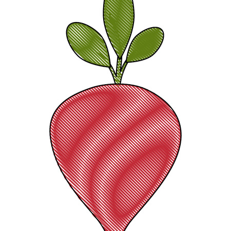 rode biet pictogram op witte achtergrond vectorillustratie