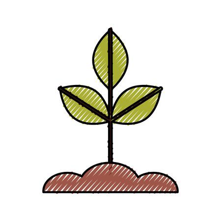 Gekweekte plant geïsoleerd pictogram vector illustratie ontwerp Stockfoto - 81657657