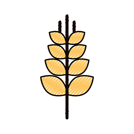 spike wheat isolated icon vector illustration design