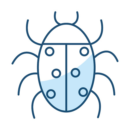 Coccinelle animal isolé icône illustration vectorielle design Banque d'images - 81662406