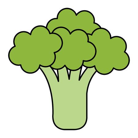 Diseño fresco del ejemplo del vector del icono aislado del bróculi Foto de archivo - 81670404