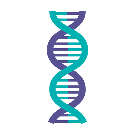 DNA-Molekül isoliert Symbol Vektor-Illustration, Design, Standard-Bild - 81670644