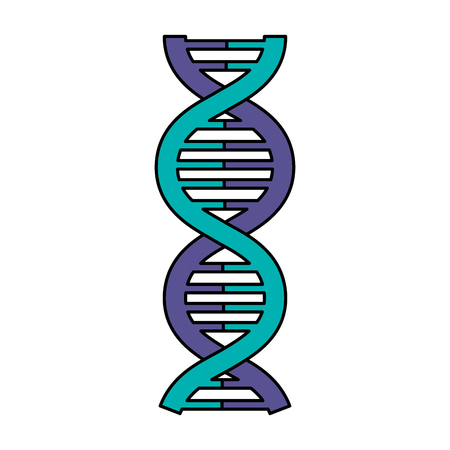dna molecule isolated icon vector illustration design Reklamní fotografie - 81671725