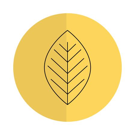 COlogie végétale leafs conception icône illustration vectorielle Banque d'images - 81672648