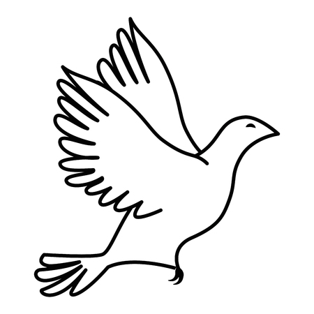 Dove bird icon over white background vector illustration Reklamní fotografie - 81726087