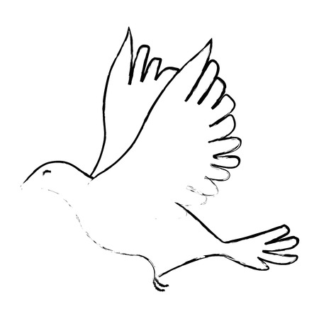 dove bird icon over white background vector illustration