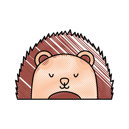 A cute and tender Porcupine vector illustration design.