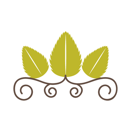 tea leafs product frame vector illustration design