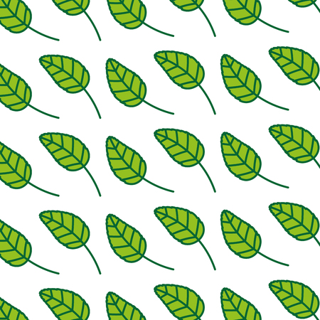 tea leafs product pattern vector illustration design