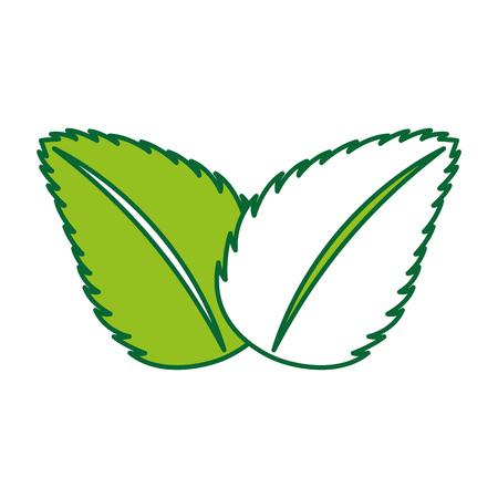 tea leafs product icon vector illustration design Illustration