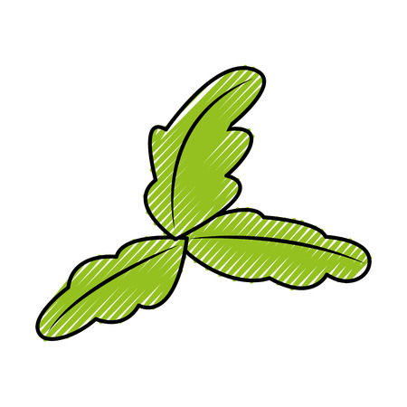 tea leafs product icon vector illustration design Ilustração