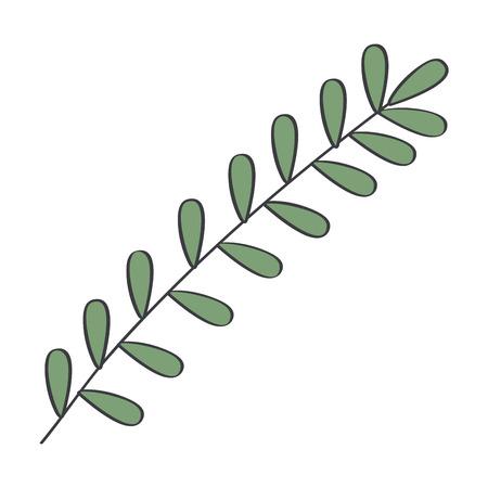 Leafy branch natural icon vector illustration design Reklamní fotografie - 82003807