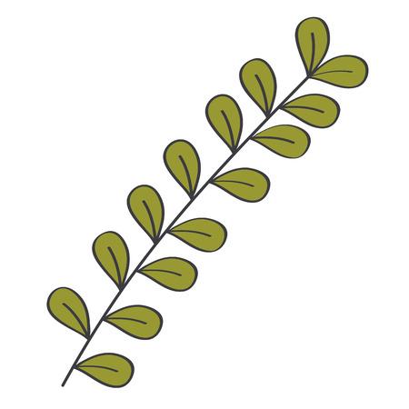 Leafy branch natural icon vector illustration design