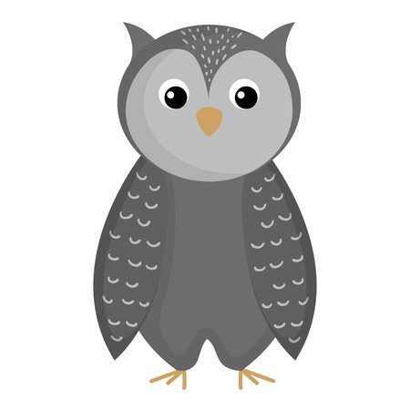 cute and tender owl vector illustration design