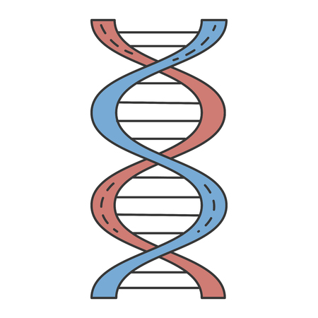 A dna molecule isolated icon vector illustration design. Çizim