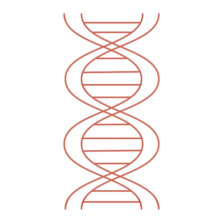 A dna molecule isolated icon vector illustration design. Ilustrace
