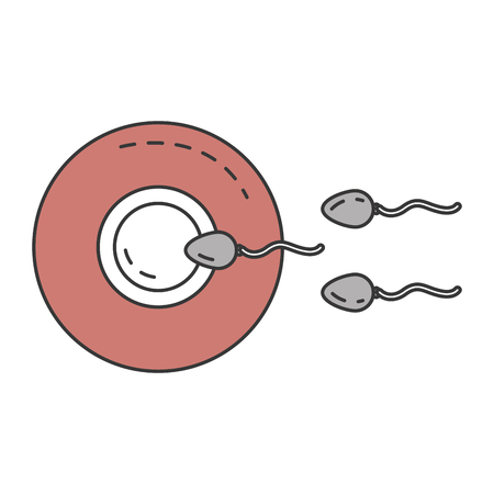 Fertilization of the ovum by the spermatozoon vector illustration design.