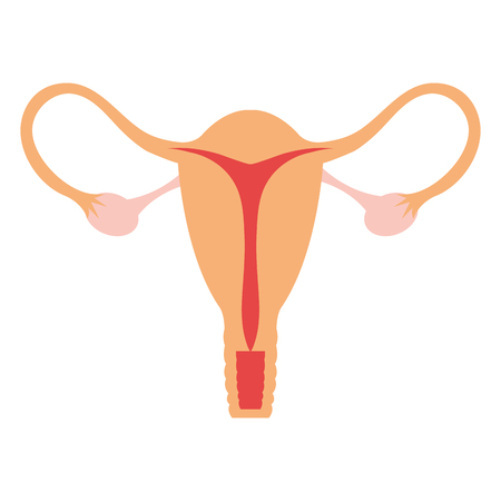Female reproductive organ icon vector illustration design Vettoriali