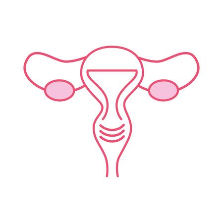 Female reproductive organ icon vector illustration design 일러스트