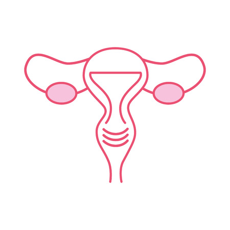 Female reproductive organ icon vector illustration design Illustration