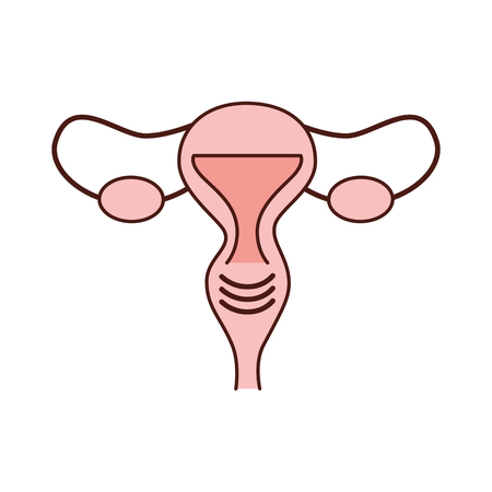 Female reproductive organ icon vector illustration design Ilustrace