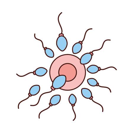 Fertilisation de l'ovule par la conception d'illustration vectorielle des spermatozoïdes Banque d'images - 82029415
