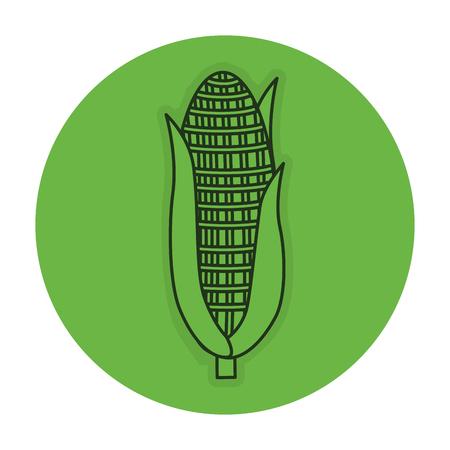 トウモロコシ野菜分離アイコン ベクトル イラスト デザイン