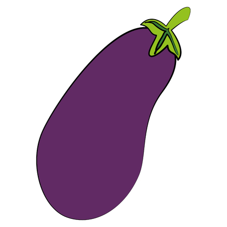 fresh eggplant isolated icon vector illustration design